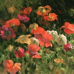 "Iceland Poppies - 36"" x 36"" - Acrylic on Canvas Available as Multiple Original"